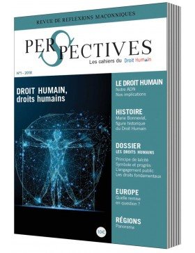 DH - num.1 Perspectives